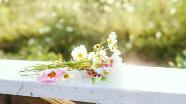 贈り物の花、供えられた花