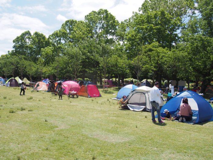 アウトドアパーク2018 一般客のテント
