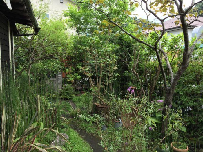 喫茶ミンカの庭
