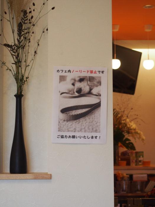 しっぽカフェ 店内ノーリード禁止張り紙