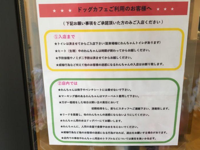 カフェai ドッグカフェ利用の注意点