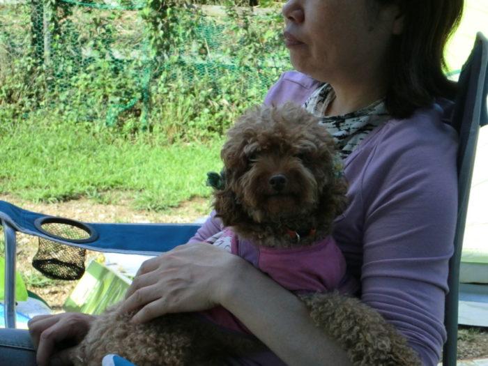 20110923アウトドアベース犬山キャンプ場 おかんに抱っこされるマオ