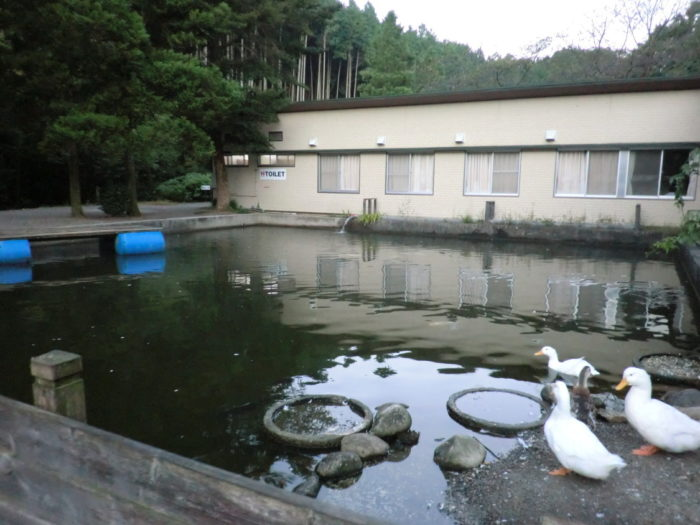 20110923アウトドアベース犬山キャンプ場 アヒル池