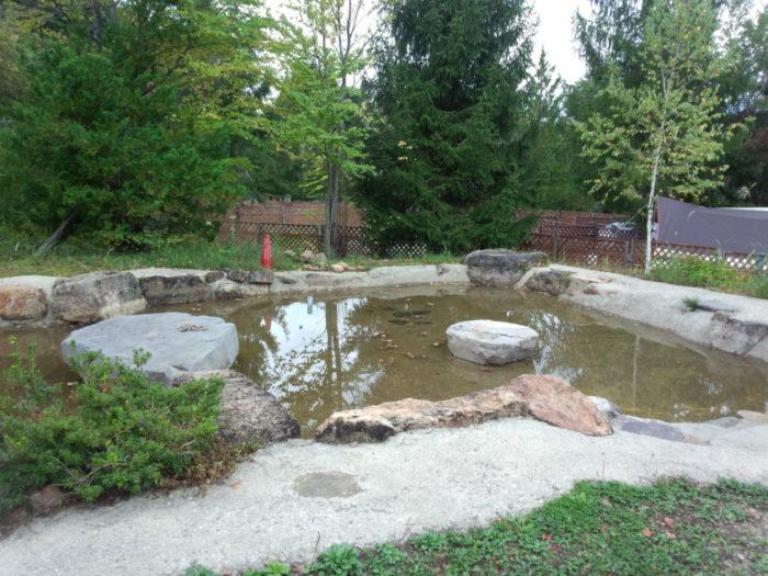 N.E.W奥長良キャンプ場 犬用池