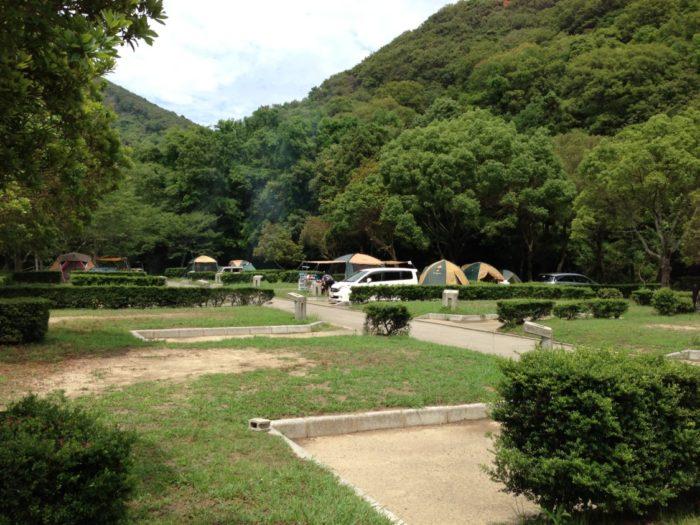 紀州加太オートキャンプ場 サイト全体
