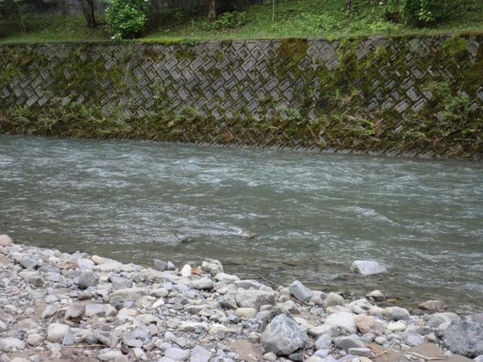 20120623滝畑湖畔バーベキュー場 川の様子