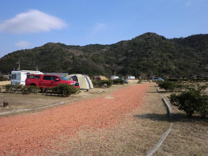 20130112じゃのひれ サイト前の道路