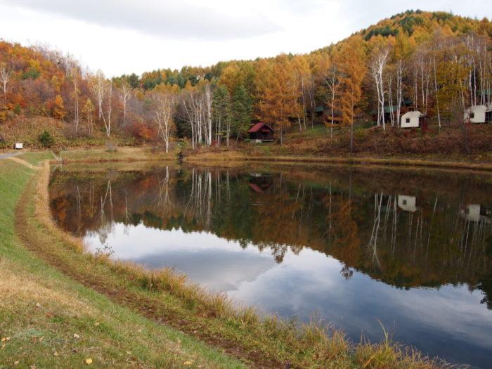 高ソメキャンプ場 釣り池