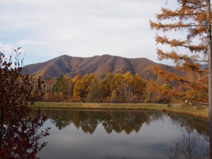 高ソメキャンプ場 山ときれいな池