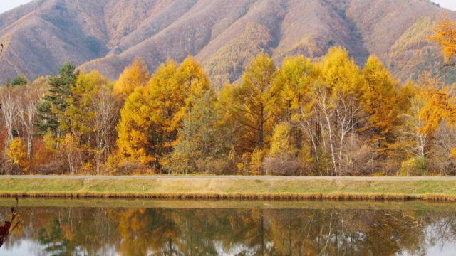 高ソメキャンプ場 最高の景色