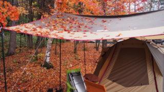 高ソメキャンプ場 タープに紅葉