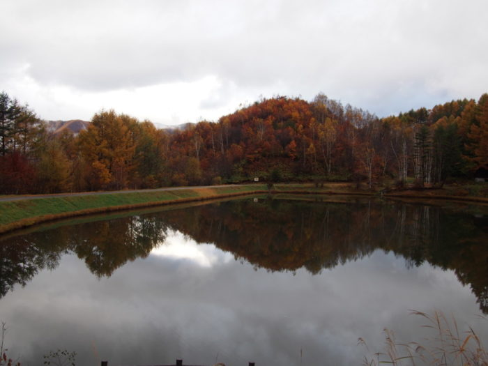 高ソメキャンプ場 曇りの湖畔
