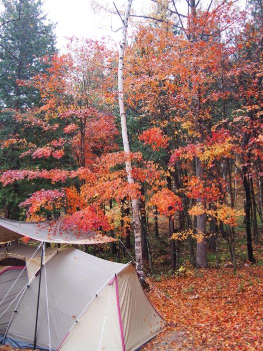 高ソメキャンプ場 テントと紅葉