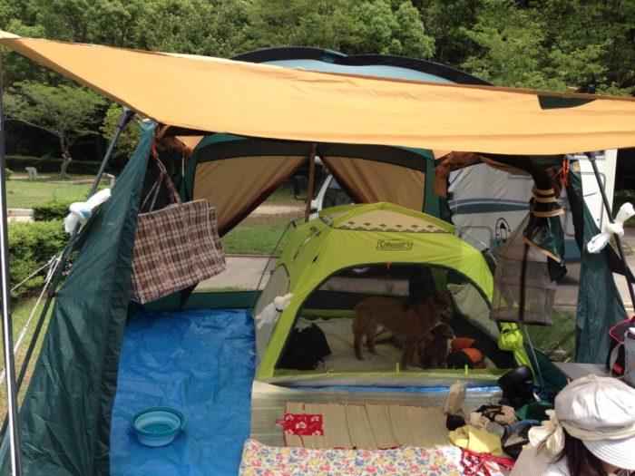 紀州加太オートキャンプ場 テント設営完了