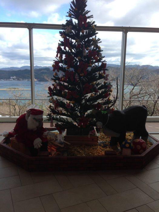 南淡路休暇村 クリスマスツリー
