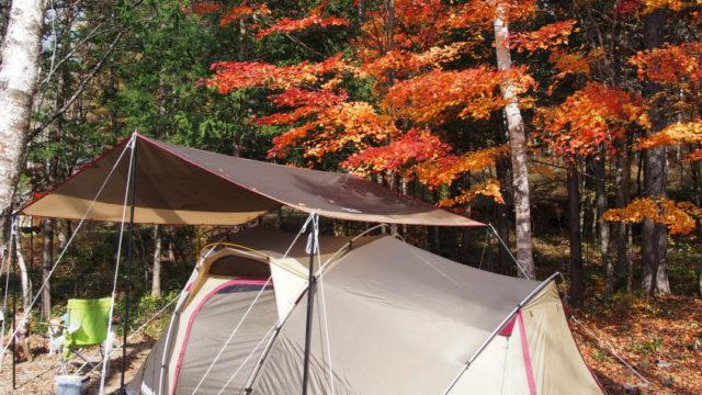 高ソメキャンプ場 紅葉とテント