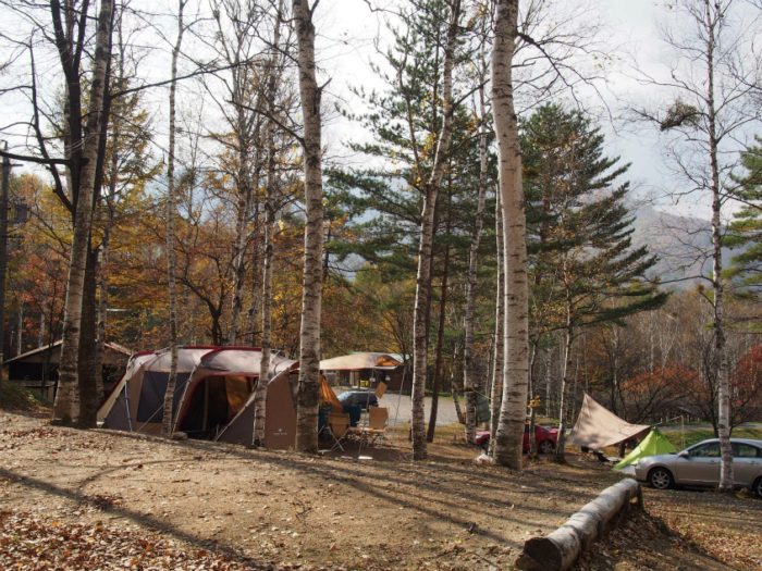 高ソメキャンプ場 林間サイト