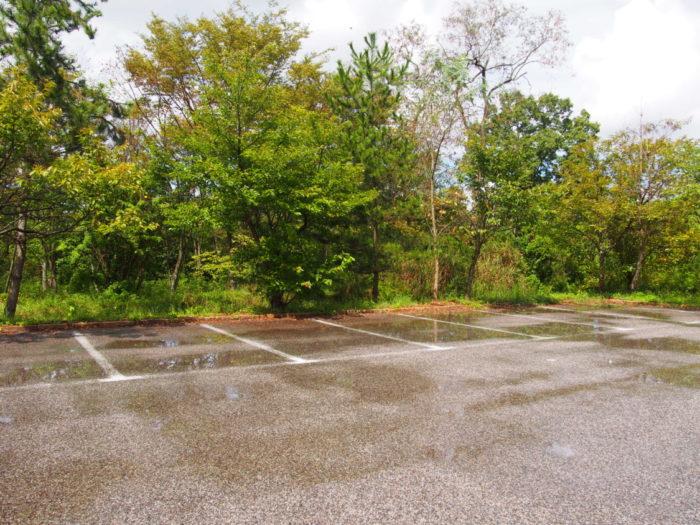 2014-09-13鉢ヶ崎オートキャンプ場 雨上がりの地面
