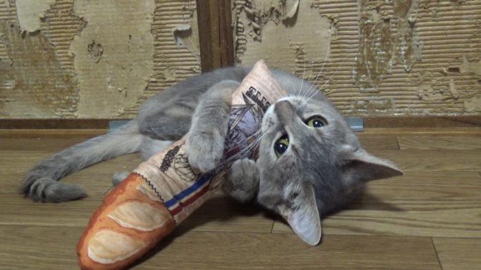 にゃごみ処猫キッカー 可愛すぎる