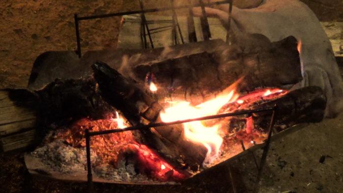 2019-12-14 木もれ陽の森 焚き火