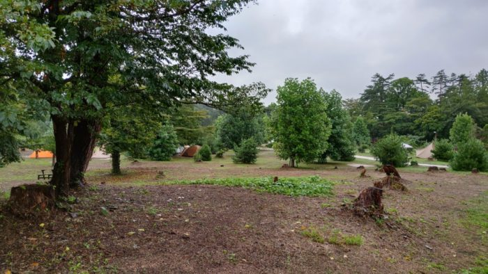 2020-09-26神鍋高原キャンプ場 サイトの地面